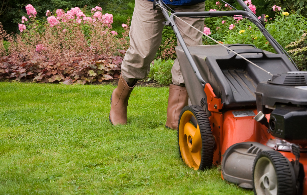 Keep Your Lawn in Top-Notch Condition